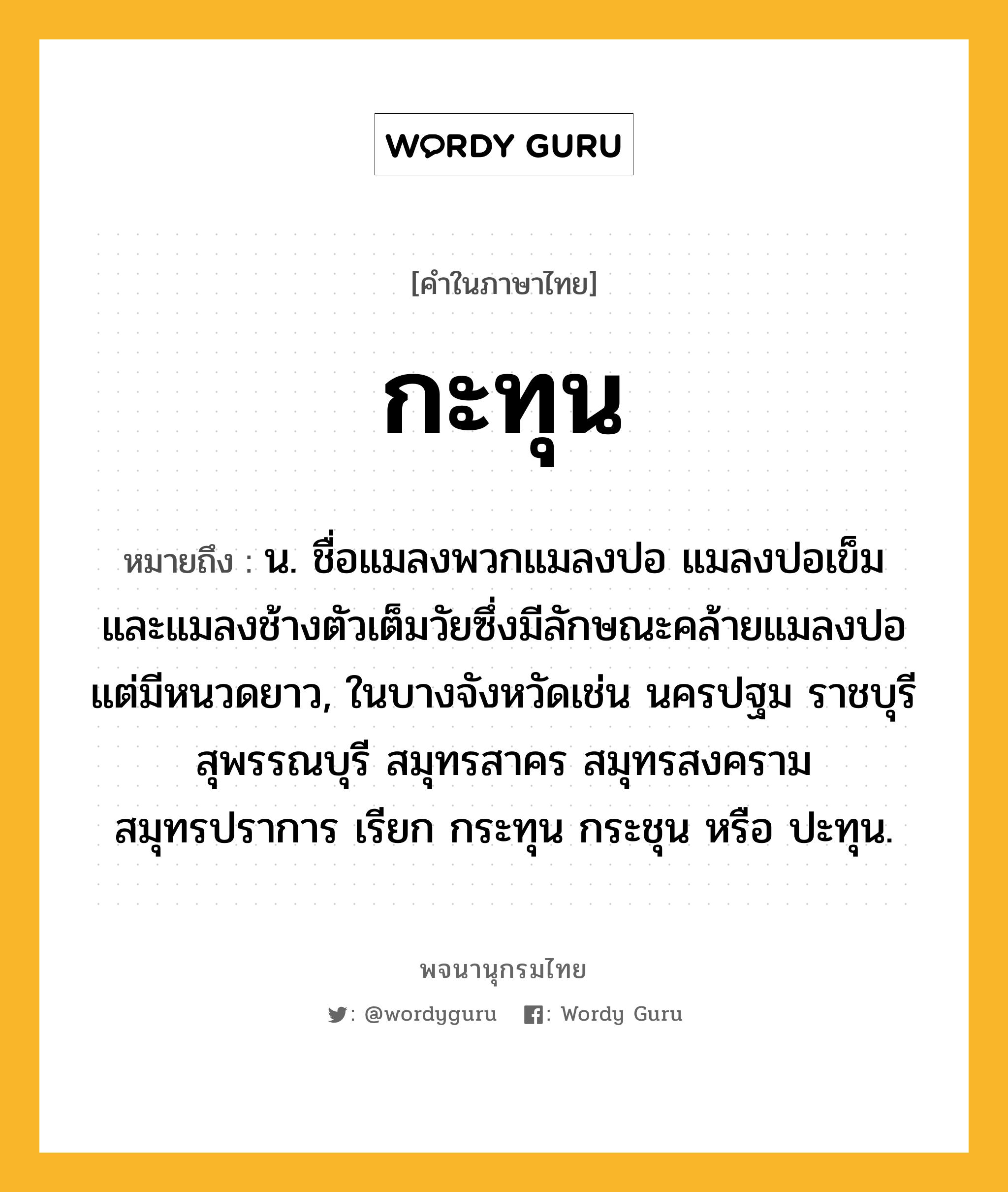 กะทุน หมายถึงอะไร? - พจนานุกรมไทย